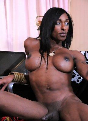 Natalia Coxx Shemale Beauty