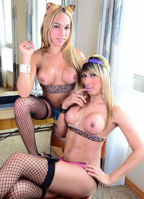 Lesbian Shemales